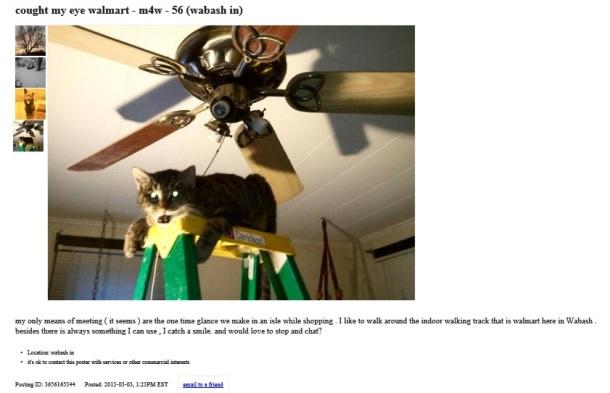 creepy cat photo